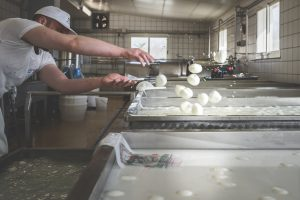 Mozzarella di Bufala Campana Dop Caseificio Il Casolare